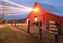 Dallas area wedding receptions / Wedding reception venues and professionals in the Dallas TX area.