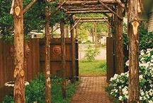 Garden Ideas / by Debra Hammer