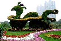 SCULPTURE - LIVING/TOPIARY / by Kerry Ford