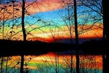 Beautiful Reflections / reflections that I love  / by Violet Macaluso