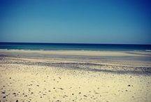 Les plages / La diversité, la beauté,...