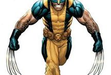 """Wolverine 