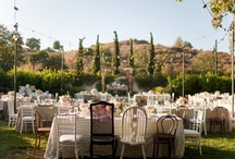 outdoor wedding / by wedding decor