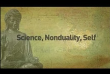 non-dual philoshophy and the Self / Non dual masters and satsangs