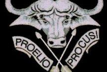 32 Battalion / South African Defense Force- Border War