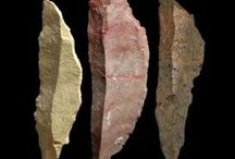 anthropology / paleo-anthropology, hominids