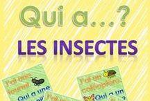 Insectes et Petite Bêtes / by Linda Roy
