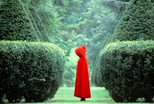 Little Red Riding Hood / by Yessica