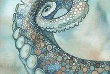 octopus / illustrazioni