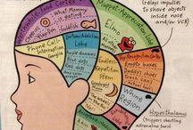 RN...Children...Pediatrics / by Howard Perley