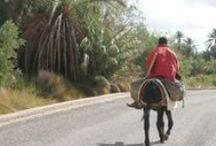 Ambiance du Maroc...
