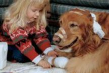 Pet First Aid / What to do when things go bad to help your pet stay with us until you get to help.