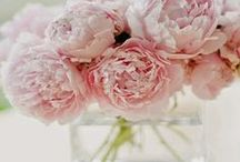 Spring / Beautiful Spring inspiration on floral arrangements, decorating, Spring weddings, and holiday entertaining.