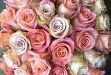Featured Florists