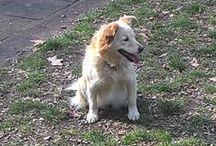 Camilla 15/12/2009