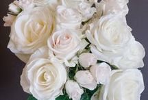 Popular White Rose Varieties / Board highlighting some of our and our client's favorite white rose, garden rose and spray rose varieties.