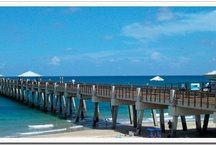 SEE: The Palm Beaches  / Places to go and things to see in The Palm Beaches