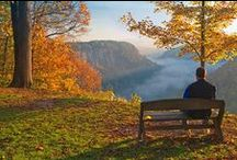 """Letchworth State Park / Known to many as; """"The Grand Canyon of the East"""".  The park came into being thanks to the vision of Mr. William Pryor Letchworth, a 19th Century Buffalo Industrialist and Humanitarian."""