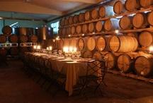 My travel bucket list / Tenuta Torciano tuscany wine tasting  http://www.torciano.com/USA/winery/private-wine-tasting/