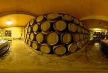 Tenuta Torciano Winery in san Gimignano / Tenuta Torciano winery , wine tasting, cooking class, vineyards day, wine & pairign food, Sangimignanoessence www.torciano.com