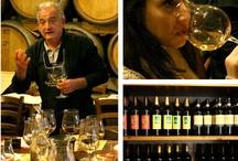 Wine tasting Class / wine tasting school , tuscan wine class