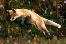 =:> Fox  Jump