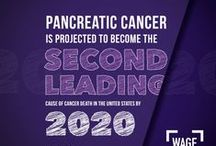 Pentel for Pancreatic Cancer Awareness / We're honored to team up with the Pancreatic Cancer Action Network to wage hope against cancer.  Learn how you can join the fight all year long at http://www.pentel.com!   / by Pentel of America