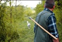 Truffle Hunting Experience / Truffle Hunting experience at Torciano Winery