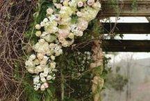 Romantic Barnsley Resort Wedding  / Romantic Barnsley Resort Wedding