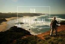 Our Walking Tours / All trails were selected from our own personal experiences. We have walked each step, choose the most breath taking views, the tastiest local food spots and an array of off the beaten track secrets, traditions, customs and places. You will experience the pure, uncensored Portugal.