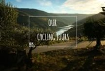 Our Cycling Tours