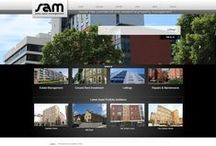 Professional Services websites / A professional website built by Realnet reflects the high quality of your service. Whether you operate in financial, legal, construction or medical markets there are specific information standards that apply to your industry. Built using LeanCMS - http://www.leancms.co.uk