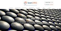 Product Package Websites / Integrated with your internal systems, Realnet can offer you one central system which is easy to navigate by your users and easy to maintain for you built using LeanCMS - http://www.leancms.co.uk