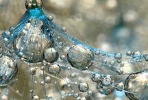 Water en Waterdruppels / De wonderen van het water
