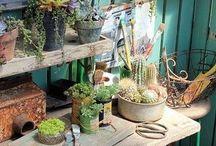 Giardino - life,green! / Idee per un giardino da fiaba tutto l'anno....