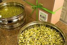 GreenMungBeans.com Products / Organic, Non-GMO Sproutable Green Mung Beans and the Latest High End Gift Item, the Green Mung Beans Sprouting Kit.