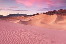 Env • Deserts & Canyons