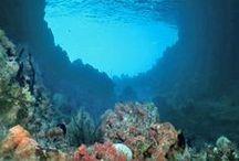 Env • Underwater