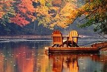 Env • Lakes, Pools & Ponds