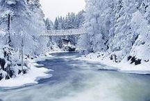 Env • Polar & Snowy