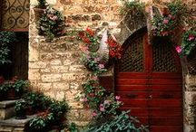 Env • Doors & Windows