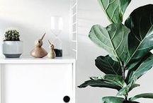 Design - Système d'étagères modulables / Trouvez des idées pour l'agencement de vos étagères avec String, Muuto et ferm LIVING.