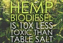 PURE HEMP Did You Know's... / Fun With Hemp Facts & Words