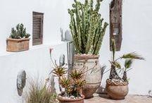 Garden / Green spaces, indoor and outdoor