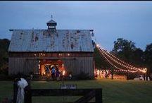 Wedding ideas & Venues