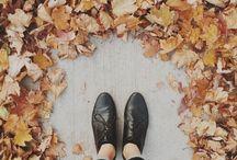 fallin for autumn;♡