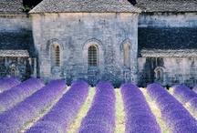 Francie / France