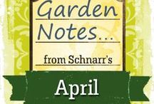 April Garden Notes / Things to do in the garden in April!