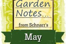 May Garden Notes / Things to do in the Garden in May.
