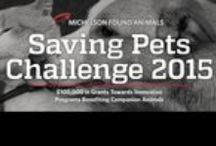 2015 #SavingPets Challenge / Nonprofit One Health Organization will begin participating in the national FoundAnimals.org Saving Pets Challenge! FThe Saving Pets online fundraising campaign is focused on reducing shelter euthanasia. One Health Organization helps keep pets and people healthy at home. Our goal is to raise $50,000 & finish in the top 5 challenge participants. There are Bonus Challenges to increase awareness & fundraising opportunities. Please donate today: https://www.crowdrise.com/OHO-SavingPets2015